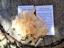 Citrine Aura Quartz Crystal Natural Rough Points-102 Grams Some Lemurians-RARE