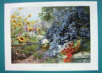 CEMETERY Overgrown with Flowers Solitude - COLOR VICTORIAN Era Print