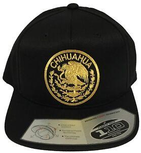 CHIHUAHUA  MEXICO HAT COLOR BLACK  LOGO FEDERAL  FLEXFIT TECH 110 SNAP BACK