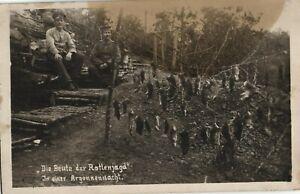 22759/ Foto AK, Rattenjagd in den Argonnen ,Alpenkorps, 1916