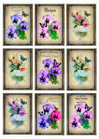 Card Toppers/Card Making/Scrapbook French Pansies Roses Butterflies Paris