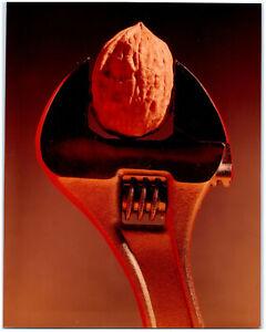 1960s Vintage Original Art Still Life Photo Walnut Adjustable Wrench Nutcracker