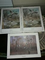 """LOT OF 2 HAROLD ROE & 1 PHILIP CROWE PRINTS, """"PINTAIL MAJESTY,"""" """"AFTER THE STORM"""