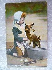 Postcard- Washing Doggy
