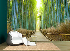 Forest Trees Plant Bamboo Path Wall Mural Photo Wallpaper GIANT WALL DECCOR