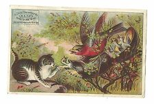 Trade Card A.S.T. Co Black Tip Child's Shoes Pels Boots Baltimore Cat Bird Nest