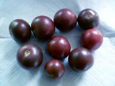 TOMATE  blaue, lila, purple, schwarze Sorten  als Mischung Tomaten, 50 Samen