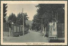 BIELLA POLLONE 01 foto G. BONDA Cartolina viaggiata 1921