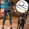 Pet Dog Running Waist Belt Jogging Elastic Adjustable Hands Free Walking     AU