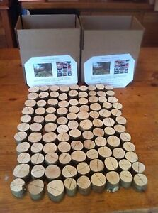 70 Pcs Rustic Wedding Name Place Card Holders Table Quality Tree Wood Mini Logs