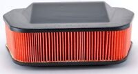 Hiflofiltro Air Filter HFA4919