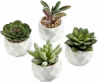 Mini Artificial Succulent Plants in Geometric Ceramic Planter Pots, Set of 4