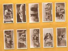 Original Cavanders cigarette cards - ANIMAL STUDIES - 1936