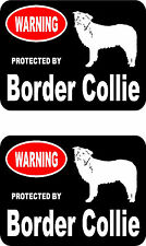 2 protected by Border Collie dog car bumper home window vinyl decals stickers