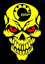 BRP Skull decal Can-am Ski-doo Summit Outlander Maverick Renegade Snowmobile ATV
