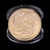 2019 China Panda Gedenkmünze Gold plattiert Souvenir Münze Neujahr GeschenXJ