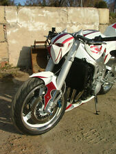 "Streetfighter Lampenmaske Skorpion ""Extremebikes"""