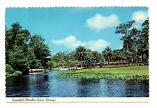 Silver Springs Florida Postcard Glass Bottom Boat Jungle Tour Water Clear as Air