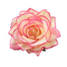 Enganche PELO ROSA Pinza para el Cabello Flores Pasador clip adorno Crema Fucsia