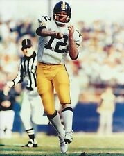 TERRY BRADSHAW 8X10 PHOTO PITTSBURGH STEELERS PICTURE NFL FOOTBALL COLOR