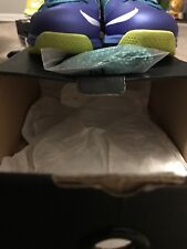 2013 NIKE AIR MAX LEBRON X 10 LOW Sprite Size 9.5 With Changeable Laces