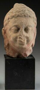 Sculpture Original Art Statue Kushan Sandstone Buddha Head 1st-2nd Century