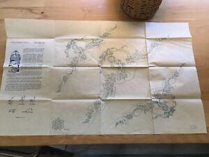 Vintage Design Pattern 891 LADY,FLOWER GARDEN Embroidery Iron On Transfer