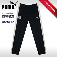 PUMA Activewear Regular Warm Fleece Tracksuits for Men