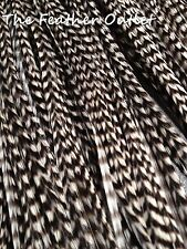 Lot 25 Grizzly Feathers Hair Extensions saddle Black White Striped B/W GRIZ