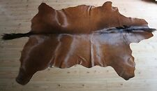 Genuine LARGE HORSE Skin Hides Pelt Rug Taxidermy 220 cm x 185 cm NEW  nr 1