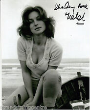 "Shirley Anne Field - B&W 10""x 8"" Signed Photo - UACC RD223"