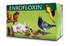 -Enrofloxi- 100/ equivalent BAYTRIL *enrofloxaci*/ STOP BACTERIAL INFECTION.
