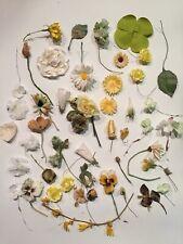 Vintage Millinery Flowers, Leaves, Petals, Lot
