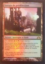 Terrain de prédilection PREMIUM / FOIL VF - French Stomping Ground- Magic mtg GT