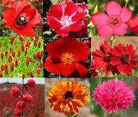 WILDFLOWER MIX RED - 1 Oz Bulk Seeds