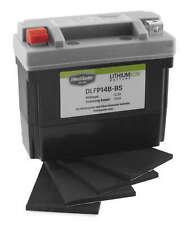 BikeMaster DLFP-14B-BS Lithium Ion Batteries