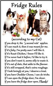 Cat Lovers Gift 'Fridge Rules' Flexible Magnet Sticks to any flat metal surface.