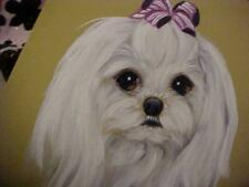 FIND YOUR BABY FACE MALTESE FOR EVER ORIGINAL PAINTING