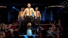 Magic Mike Poster Length :800 mm Height: 500 mm  SKU: 2832