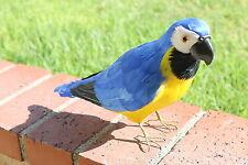 Furry Animal Feather Blue Parrot Taxidermy Decorative Figurine Decor Colorful