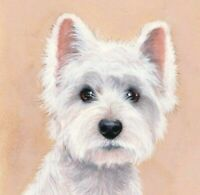 "Dogs Westie ""Beautiful"" Limited Edition Fine Art Print Original by S. Barratt"