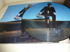 LP.PINK FLOYD.PICTURE.PICTURE.WISH YOU WERE HERE.LIVE.NY 1994 .FAN CLUB JAPAN.
