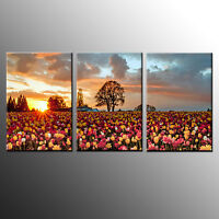 HD Canvas Print Art Colorful Roses Wall Art Canvas Painting Print-3PC-No Frame