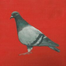 Blank greeting card - Pigeon
