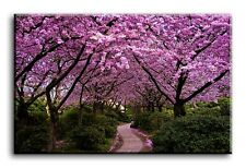 Large Wall Art Canvas Print of Pink Blossom Trees Framed