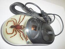 Optical Computer Mouse Tarantula Spider Specimen Black Case Glow in the dark