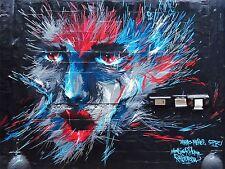 ART PRINT POSTER PHOTO GRAFFITI MURAL STREET ART HAIRY FACE NOFL0222