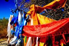 5 FT LONG! TIBET WIND HORSE PRAYER FLAG: WHITE HEALING SUTRA OF MEDICINE BUDDHA