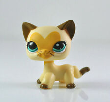 Littlest Pet Shop LPS Tan Brown Heart Face Short Hair Cat Toys Rare #3573  Xmas