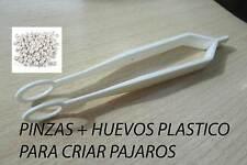Huevos falsos de plastico para criar pajaros y pinzas para recogerlos del nido
